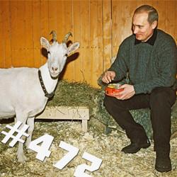 Европа и скромное обаяние российского лидера