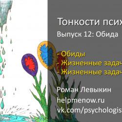 Психология обиды (Тонкости психологии 12)