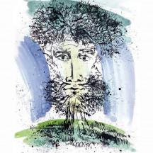 Голова садовая