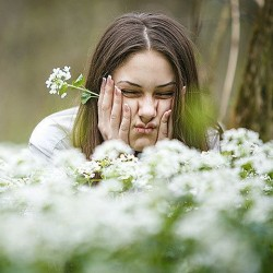 Весна! Начался сезон страданий аллергиков