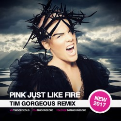 Pink - Just Like Fire (Tim Gorgeous Remix) [Clubmasters Records Artist]