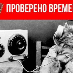 Герой русского рока в звездно-полосатой юбке: Джоанна Стингрей. 2-я часть