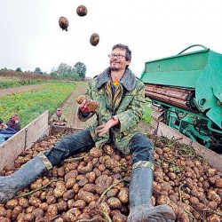 Постиндустриальное крестьянство или новая деревенщина