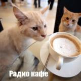 Радио Кафе