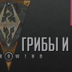 [5.22] Про TES: Morrowind, обратную совместимость, разработку ME: Andromeda и E3 2017