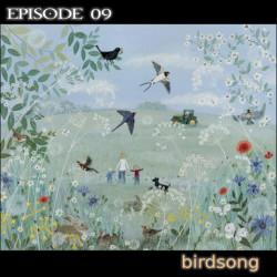 sound 09 birdsong