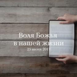 Божья воля в нашей жизни