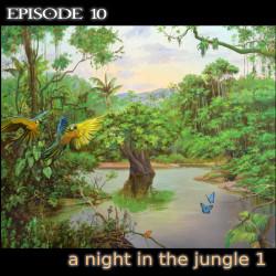 sound 10 a night in the jungle 1