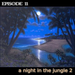 sound 11 a night in the jungle 2