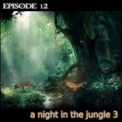 sound 12 a night in the jungle 3