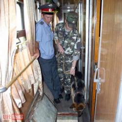 Служебная собака нашла ввагоне поезда контрабандные iPhone4S (41)