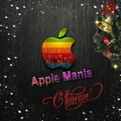 Спецвыпуск. Подведение итогов индустрии Apple за 2010 год (47)