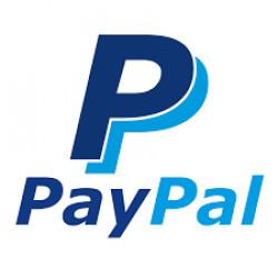 Платёжная система PayPal. Лидер или рискованное предприятие?