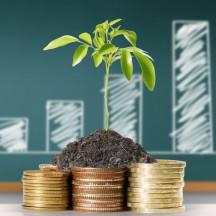 Виды инвестиционных инструментов: акция, облигация, ETF, ПИФы и не только