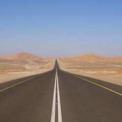 Road tripping: путешествие по дорогам США