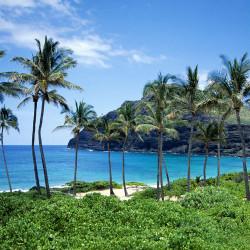 Путешествие на Гавайи