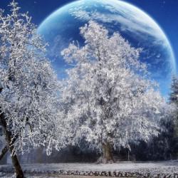 Медитация на Луну Снега