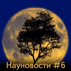 Науновости #6 - Растения на луне