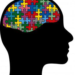 мужчина и женщина о двух видах мозга