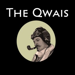The Qwais #4. Ответы на вопросы 1