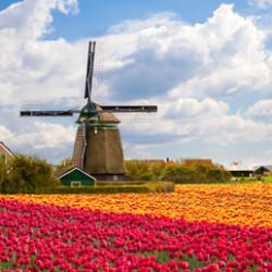 Нидерланды. Дружелюбная и уютная страна