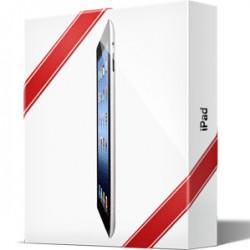 iPad и iPad Mini — самые желанные рождественские подарки