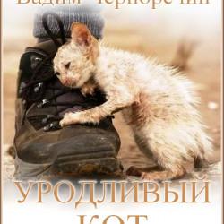 Вадим Черноречин - Уродливый кот
