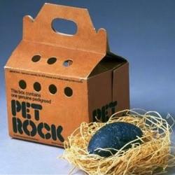 Домашние питомцы для ленивых, или история успеха Pet Rock