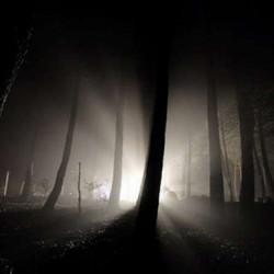 """From Dark An' Light"" (композиция: фьюжн)"