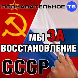Мы за восстановление СССР (Познавательное ТВ, Антон Романов)