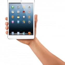 Новые iPad иiPad Mini появятся вмарте