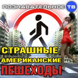 Страшные американские пешеходы (Познавательное ТВ, Наталия Локоть)