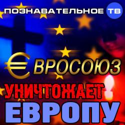 Евросоюз уничтожает Европу (Познавательное ТВ, Вера Люккераск-Берг)