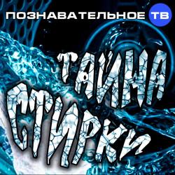 Тайна стирки (Познавательное ТВ, Елена Рычкова)