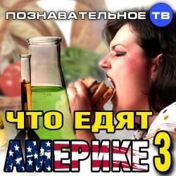 Что едят а Америке 3 (Познавательное ТВ, Нидас Ундровинас)