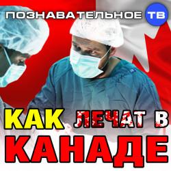 Как лечат в Канаде (Познавательное ТВ, Александр Могутнов)