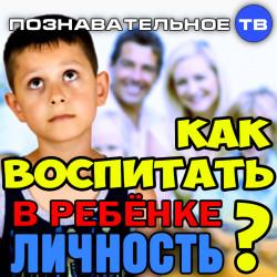 Как воспитать в ребёнке личность? (Познавательное ТВ, Михаил Величко)