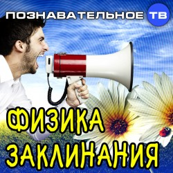 Физика заклинания (Познавательное ТВ, Михаил Величко)