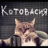 kot_vasiliy