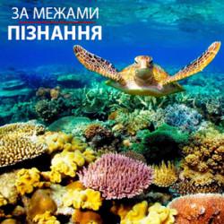 """3. Дизайн-проект """"Земля"""""""