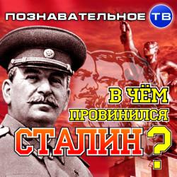 В чём провинился Сталин? (Познавательное ТВ, Михаил Величко)
